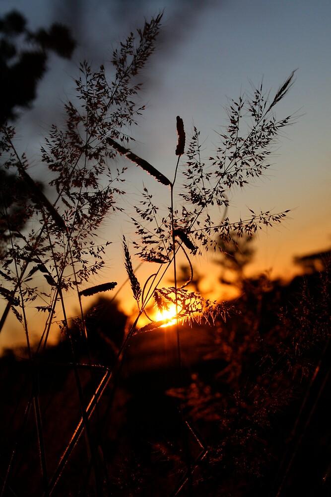 Tableland Sunset by Dan Weston