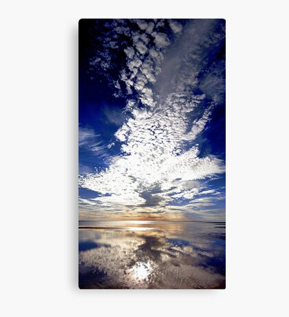 Morning Reflection  Canvas Print