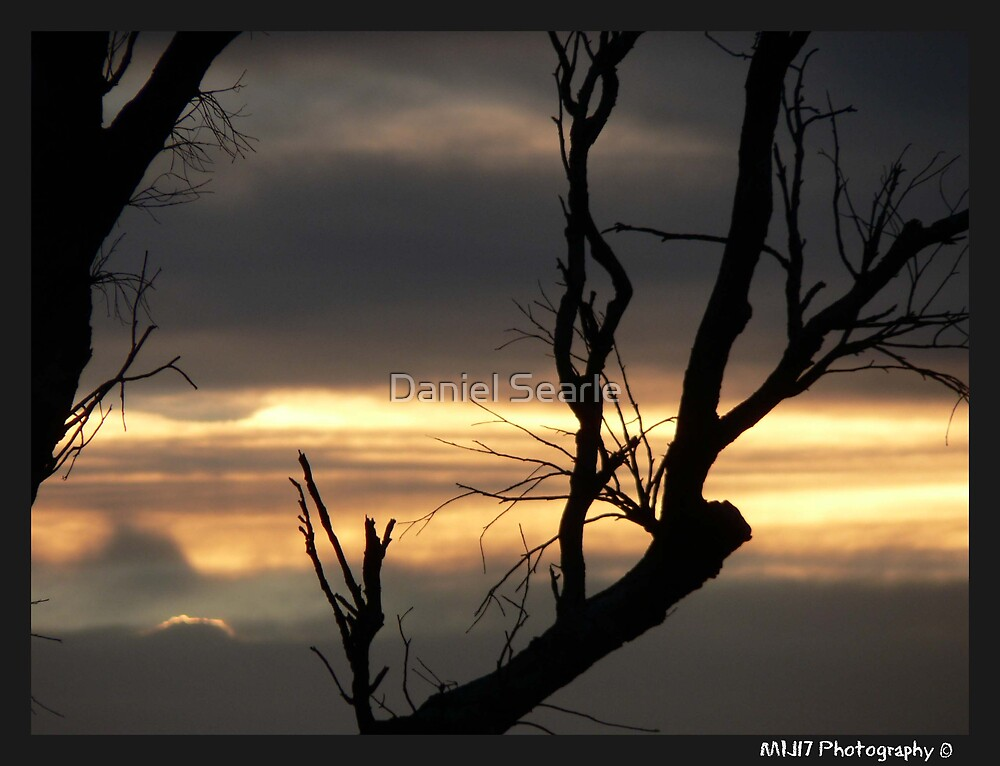 Outback Sunset - Raymond Terrace, Nsw by Daniel Searle