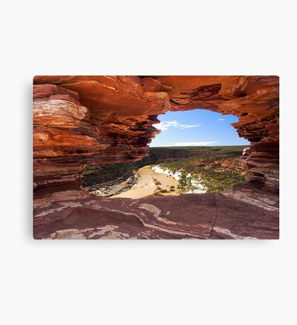 Peaking Through Natures Window  Canvas Print