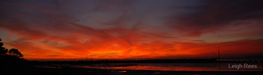 Fire in the Sky by Leigh Rees