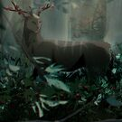 The endless Forest by Kelshray