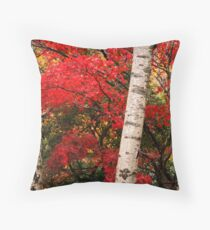 http://www.redbubble.com/people/rivergirl/art/everything/tags/dandenongs; Red maple and white birches Throw Pillow