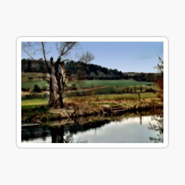 Alter Baum am Fluss  Sticker