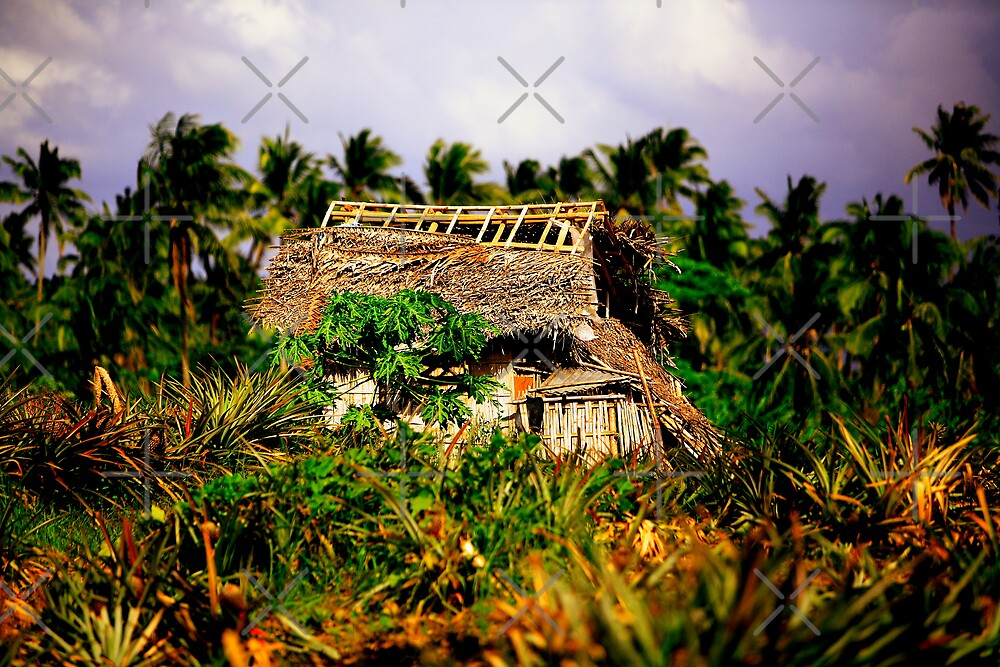 Pineapple Hut by Ben Pacificar
