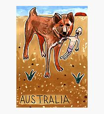 Greetings From Australia - Dingo Photographic Print