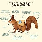 Anatomy of an Oxford OH Squirrel by Sophie Corrigan