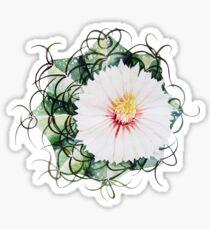 Watercolor blooming cactus Sticker