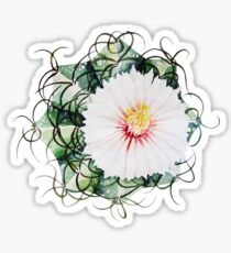 Watercolor blooming cactus Sticker