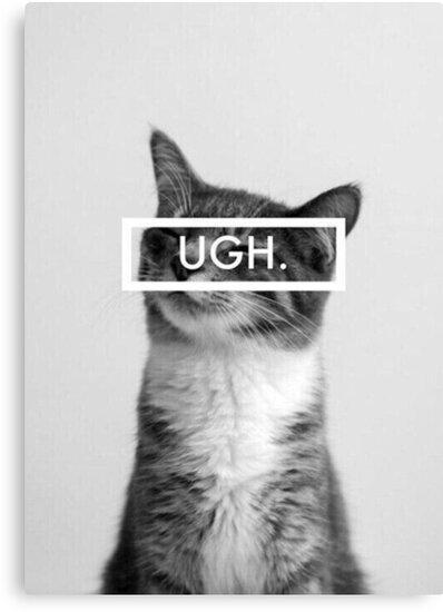 ugh cat tumblr canvas prints by ellelouise101 redbubble