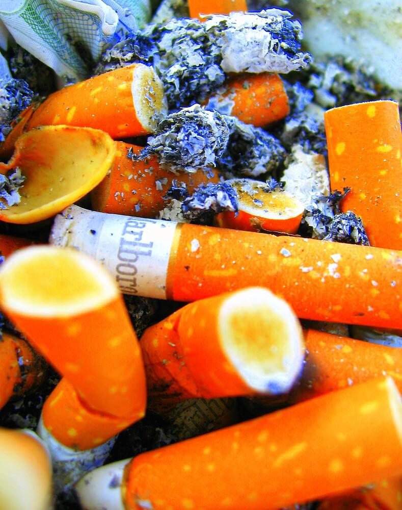 smoke free by Sasha Mihalova