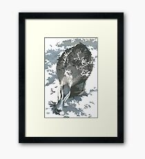 little duck Framed Print