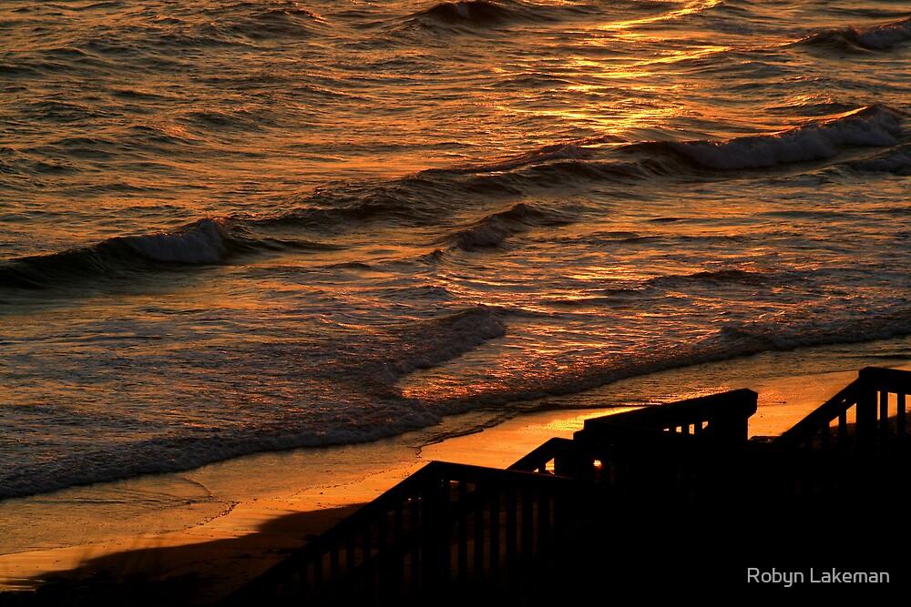 Golden evening light by Robyn Lakeman