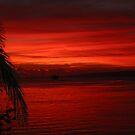 vanuatu red by Rob  McDonald