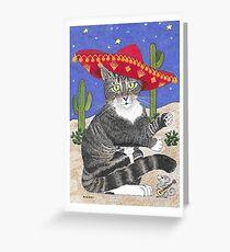 Tabby Cat in Sombrero Greeting Card