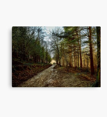 A Bit of a Muddy Walk Canvas Print