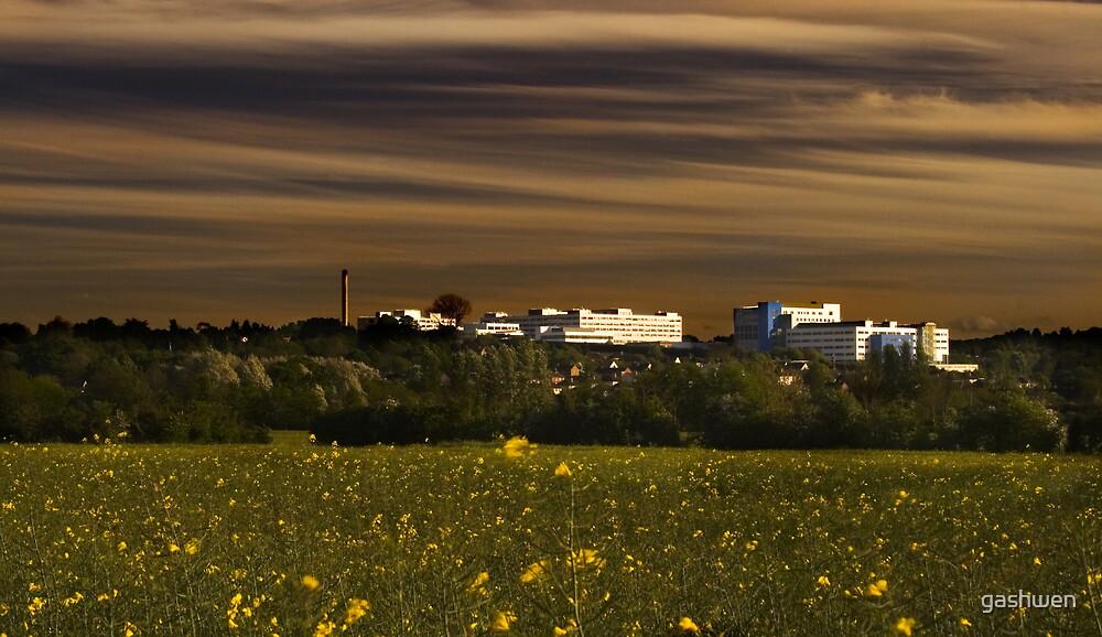 The John Radcliffe Hospital by gashwen