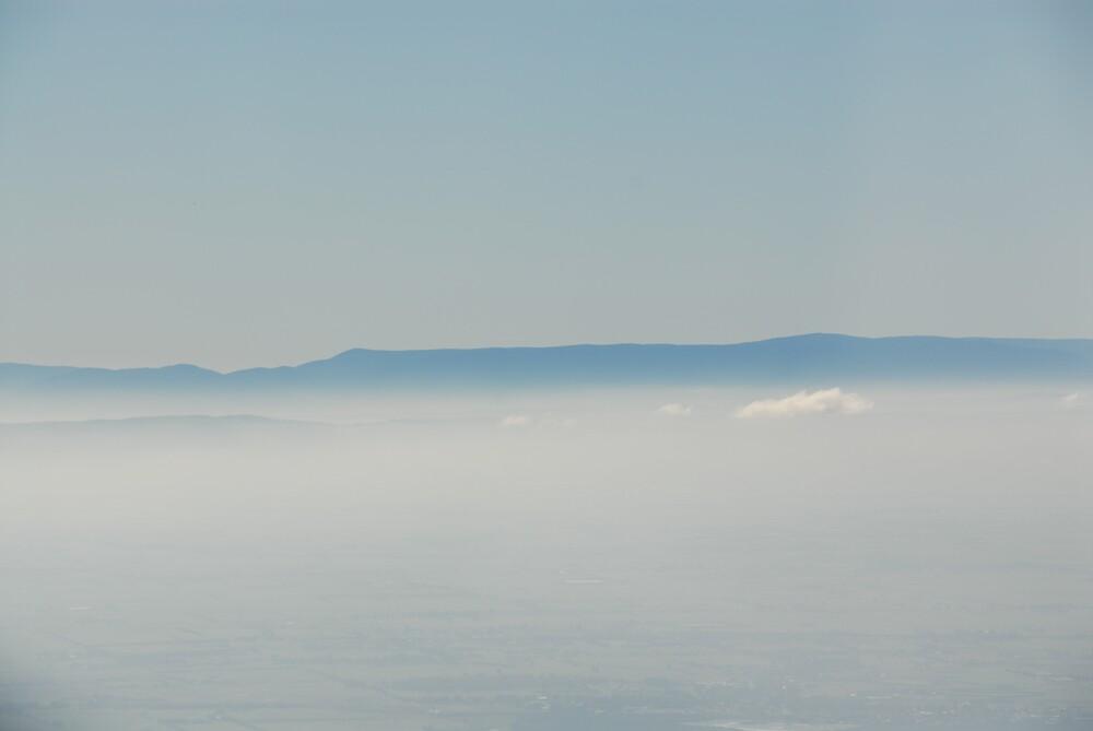 Dandenong Mountains by yudc