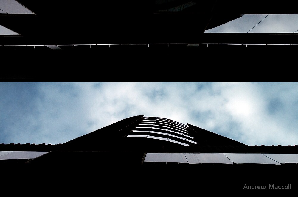 QV by Andrew  Maccoll