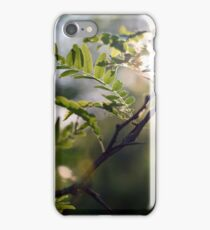 Leaves and Light iPhone Case/Skin