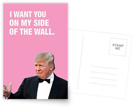 I Want You On My Side Of The Wall - Trump Valentine by LolWowOmg