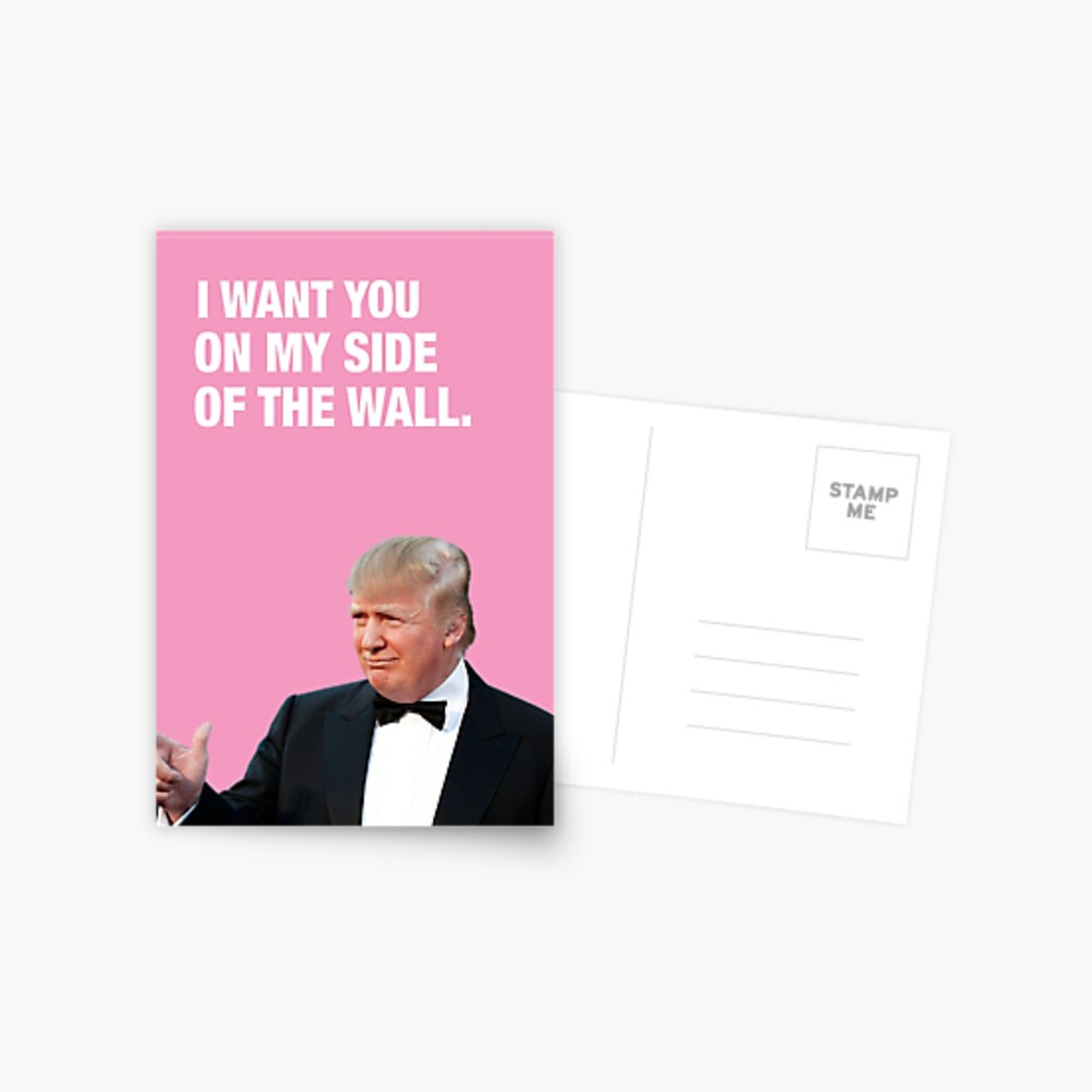 I Want You On My Side Of The Wall - Trump Valentine Postcard