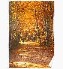 Autumn in Edinburgh Poster