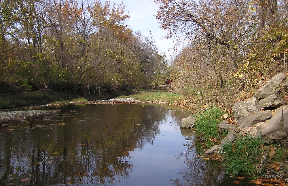 Looking Forward Down the Creek by pbaack