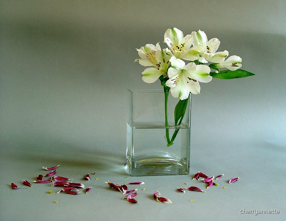 petals creme by cherryannette