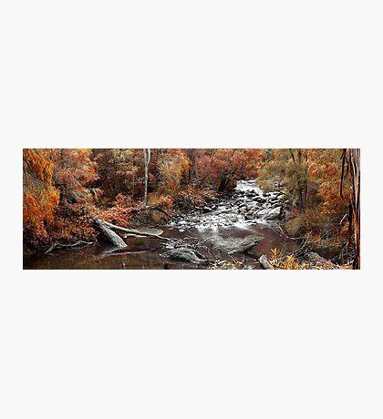 Cascades In Autumn  Photographic Print