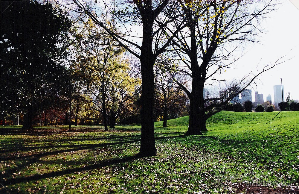 Autum Botanical Gardens   by Christine Wilson