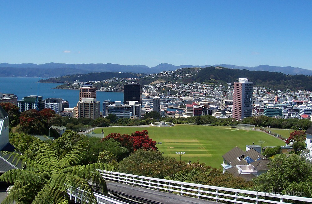 Top of the Cable Car Wellington NZ   by Christine Wilson