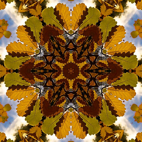 Autumn Clover by ArtProphet