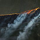 line of fire by victor