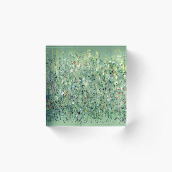 Tenderness Acrylic Block