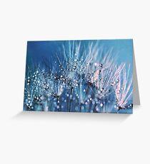 Dew on dandelions Greeting Card