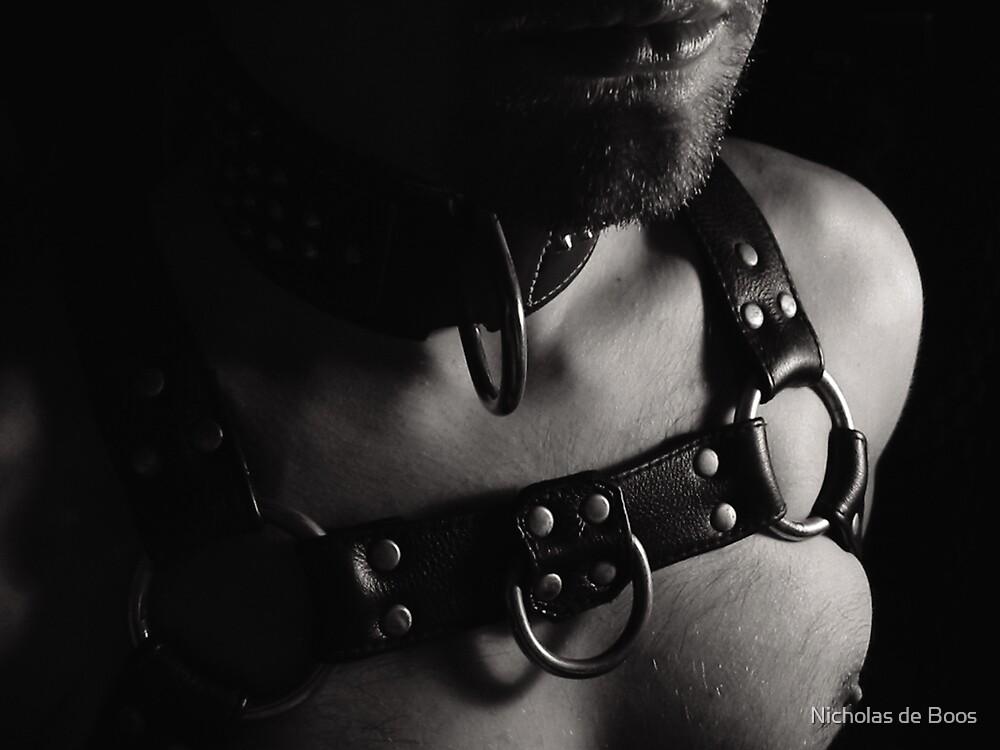 Harness by Nicholas de Boos