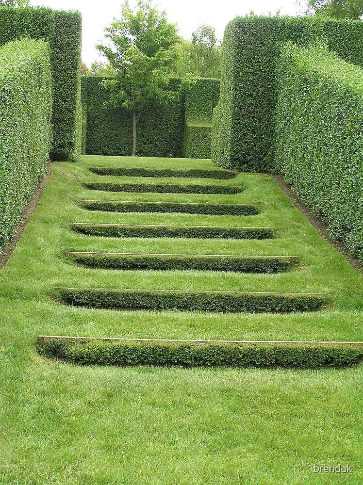 Hedges in Paul Bangay's Garden by brendak