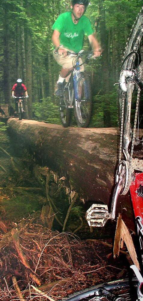 Big Log by Cliff Vestergaard