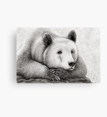 Brooding Bear Canvas Print
