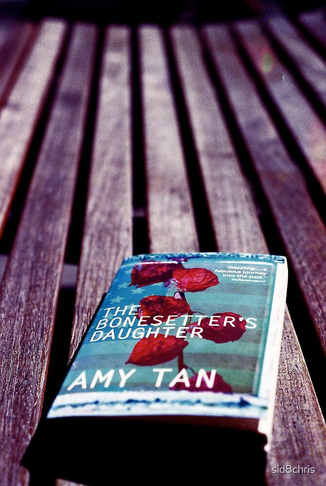 The Bonesetter's Daughter by sid8chris