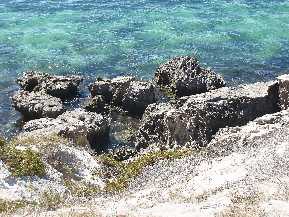 Rottnest by Carolyn