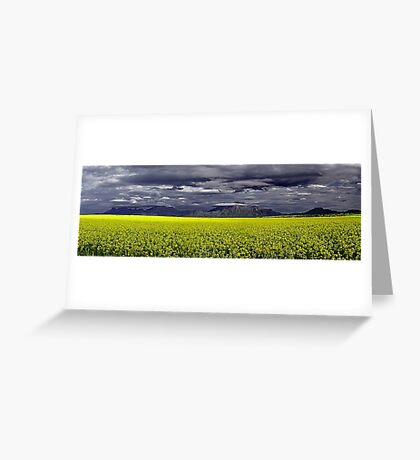 Storm Over The Canola Field  Greeting Card