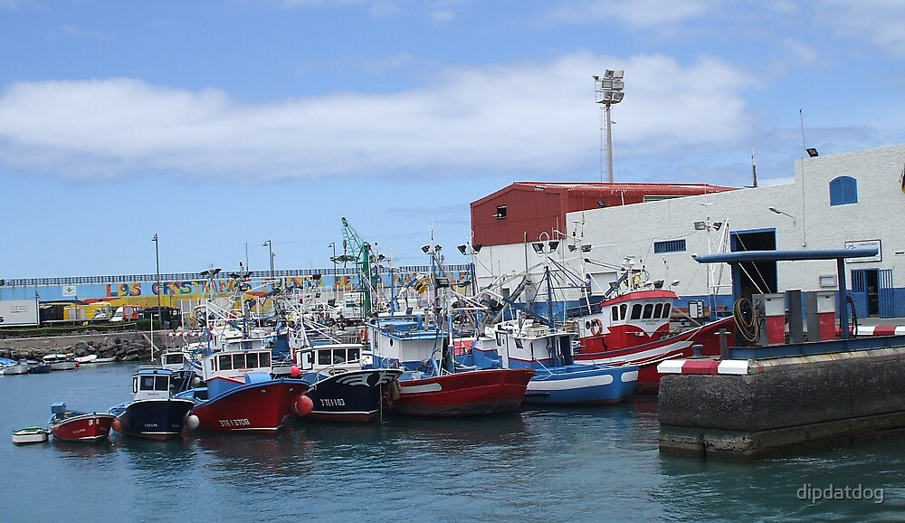 Fishing boats in habour by dipdatdog