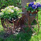 Spring ride by MarianBendeth