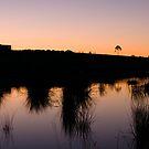 Sunset Silhouette by Joel McDonald