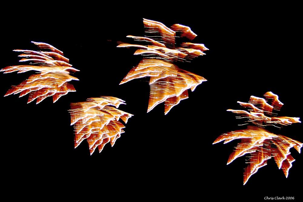 Firework Dogs by Chris Clark