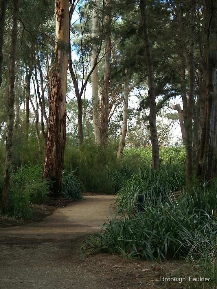 A Peacefull Walk by Bronwyn  Faulder