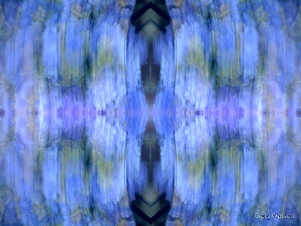 Kaleidoscopic Blur #2 by Craig Watson