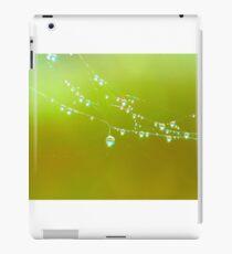 water drops on green iPad Case/Skin